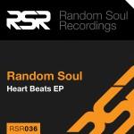 RSR036-CD-Slip