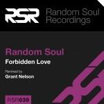 RSR039-CD-Slip