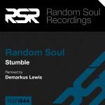RSR044-CD-Slip