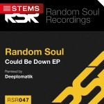 RSR047-CD-Slip-Stems