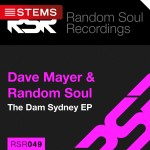 RSR049-CD-Slip-Stems