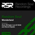 RSR055-CD-Slip